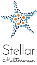 holidays in stellar hotels